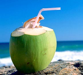Coconut is Good for Summer