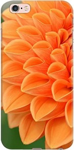 DailyObjects Blooming Flower Case For iPhone 6s Plus