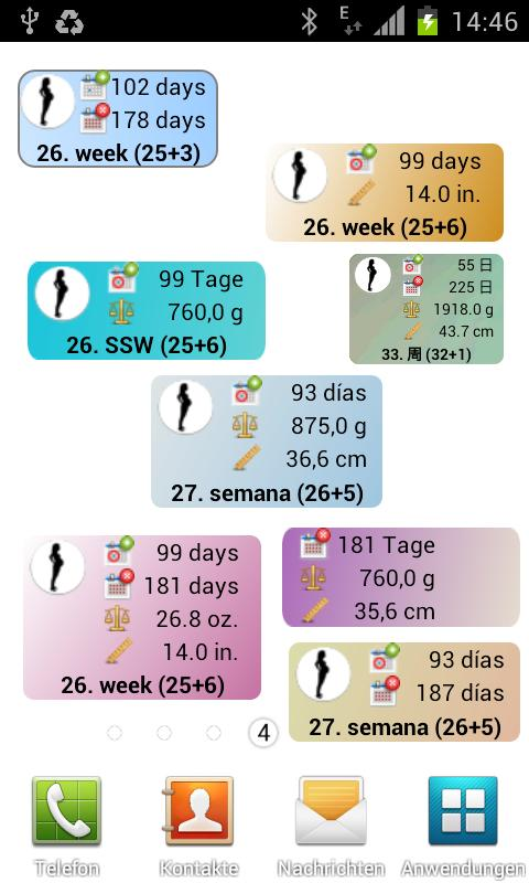 Pregnancy watcher widget
