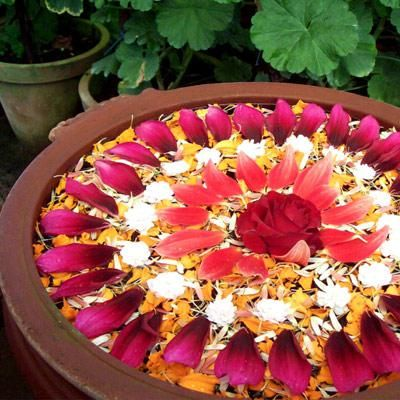 floating rangoli with petals