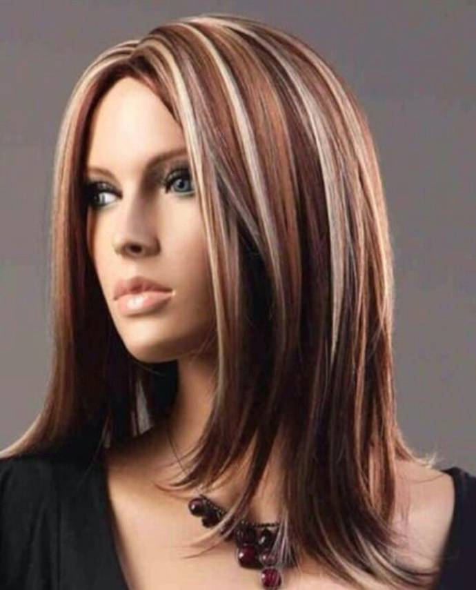 Brown Hair With Blonde Highlight Pictures 2