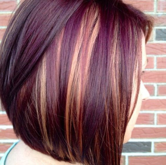 Caramel with dark plum highlights on short hairs