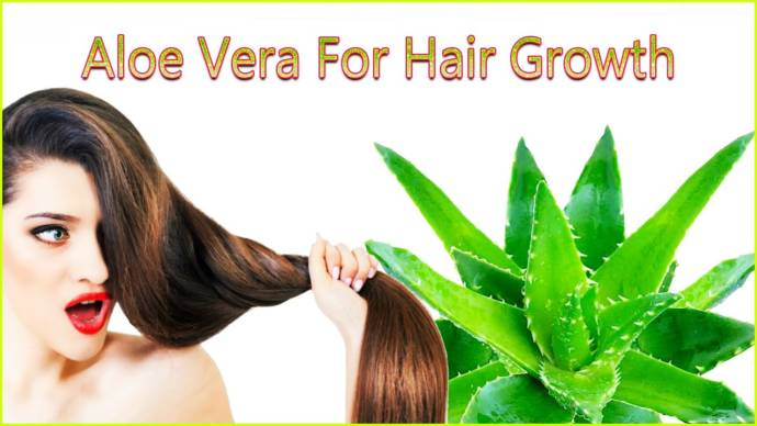how to use aloe vera for hair?