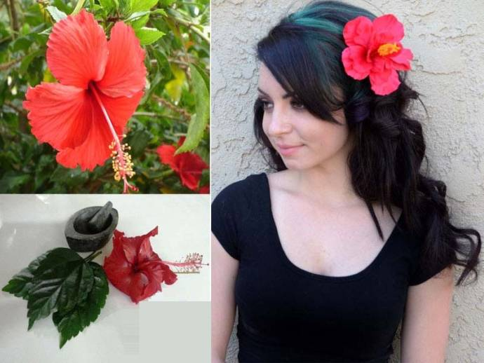 Hibiscus Powder For Hair - Hair Masks