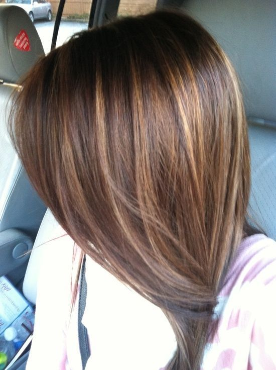 Caramel highlights on brown hairs