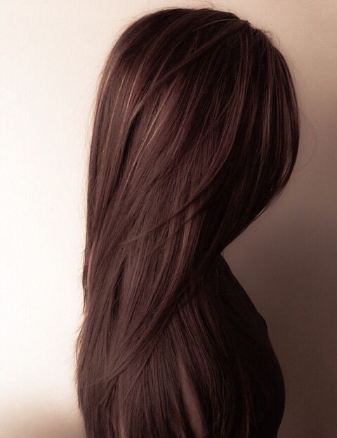 Chocolate brown with golden highlights