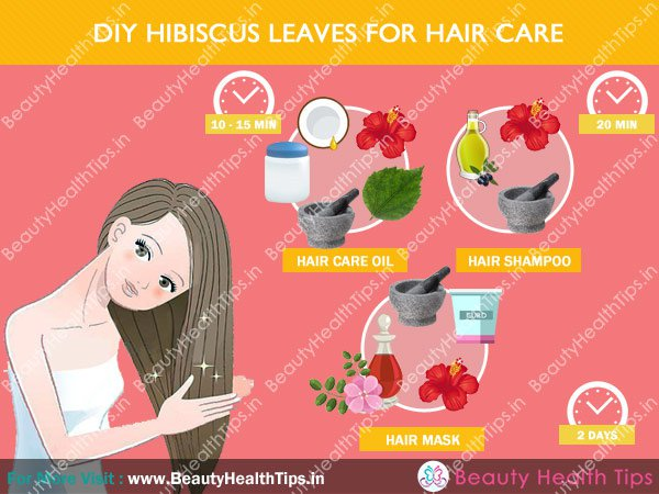How to use hibiscus leaves & flowers for hair growth & stop