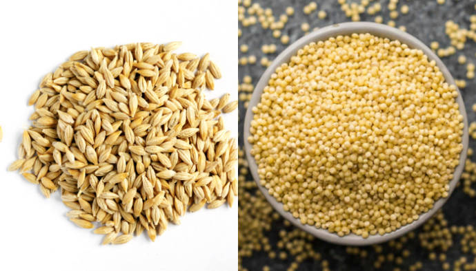 Barley and millet