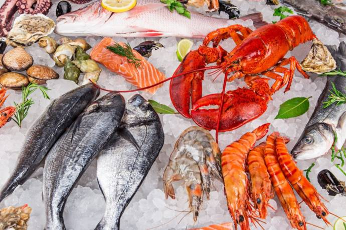 Fishes which contain mercury and seafoods