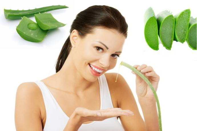 How to get rid of pimples using aloe vera