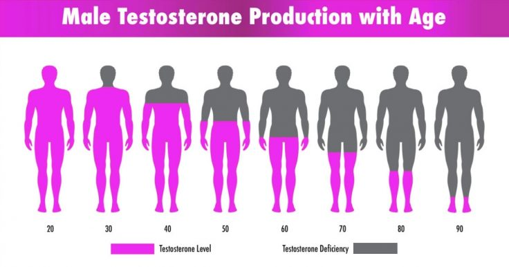 Testosterone Foods